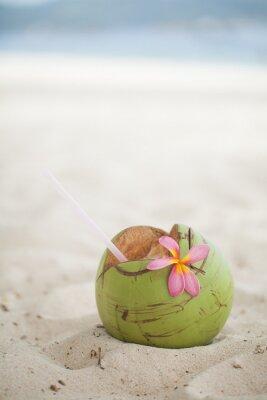 Наклейка Кокос на пляже