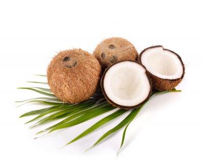 Наклейка кокосового ореха на белом фоне