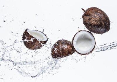 Наклейка Кокосовые орехи с всплеск воды