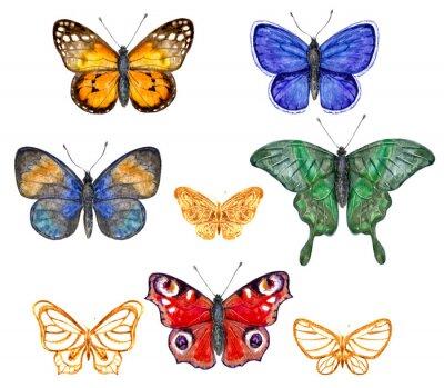 Наклейка Цветные бабочки комплект