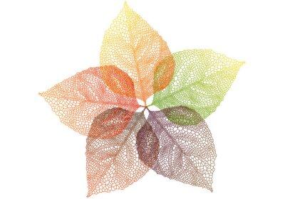 Наклейка красочные осенние листья, вектор