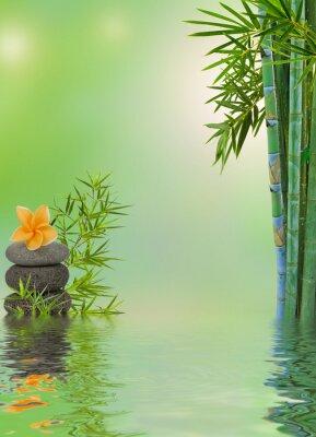 Наклейка Состав Aquatique релаксационный массаж дзен