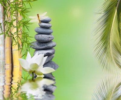 Наклейка composition bambou palmier galets zen aquatique