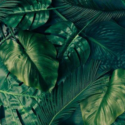 Наклейка Творческие тропические зеленые листья макет. Концепция весны природы. Квартира лежала.