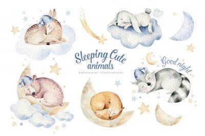 Наклейка Cute dreaming cartoon animal deer, bear hand drawn watercolor illustration. Sleeping rabbit charecher kids nursery wear fashion design, baby cartoon and fox