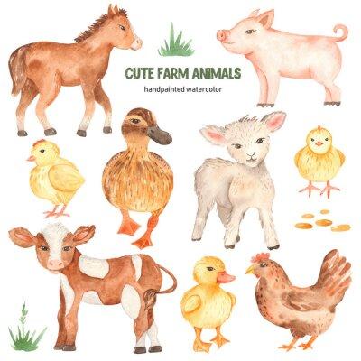 Наклейка Cute farm animals horse, pig, lamb, calf, duck, duckling, watercolor chick