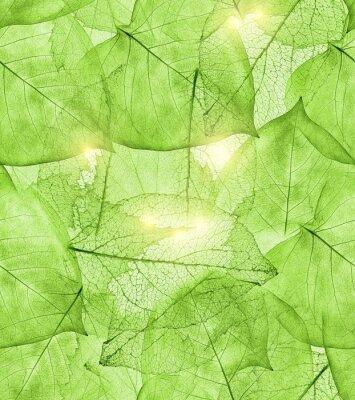 Наклейка темно-зеленые листья фон