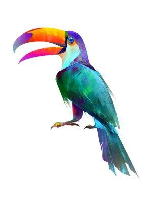 Наклейка нарисованная изолированная яркая птица сидит Туканская сторона