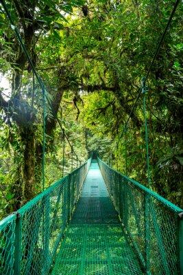 Наклейка Brücke им сделайте Regenwald в Коста-Рике