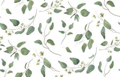 Наклейка Эвкалипт различное дерево, листва естественные ветки с зелеными листьями семена тропический бесшовный узор, акварельный стиль. Вектор декоративные красивые мило элегантный иллюстрации изолированные бе