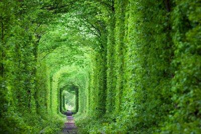 Наклейка Фантастическая Real Туннель Любви, зеленые деревья и железная дорога
