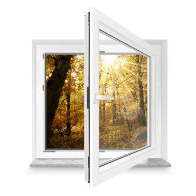 Наклейка Окно 28