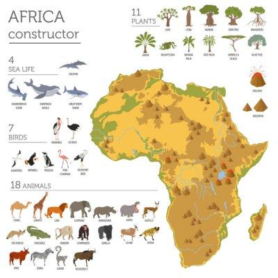 Наклейка Плоские флоры Африки и карта фауны элементов конструктора. Животные, б