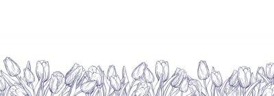 Наклейка Плоский горизонтальный баннер шаблон с контуром тюльпанов на белом фоне