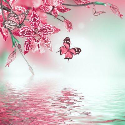 Наклейка Цветочный фон тропических орхидей, бабочки
