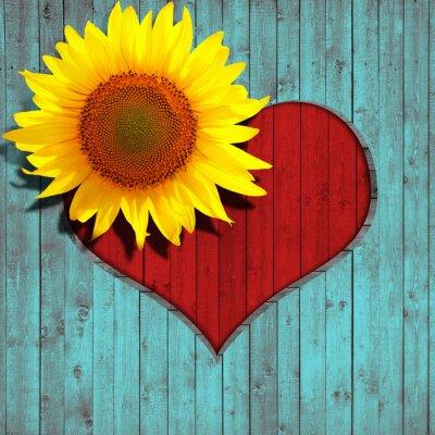 Наклейка цветок подсолнечника сердце и бирюзовый фон древесины