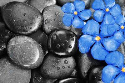 Наклейка Цветы и камни