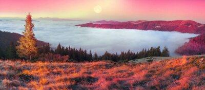 Наклейка Туман осенью