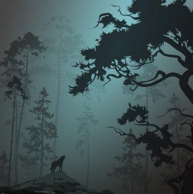 Наклейка Туманный пейзаж с силуэтом леса, сосны и волк, лунный свет