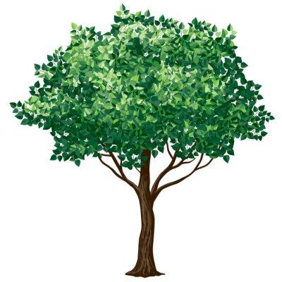 Наклейка Листва деревьев