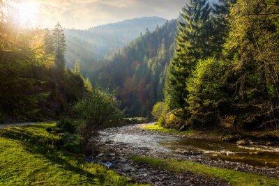Наклейка лес река в горах