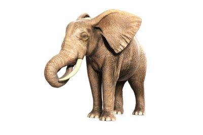Наклейка Freigestellter Elefant ам Fressen (gerendertes Bild)