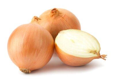 Наклейка Свежие луковицы лука на белом фоне