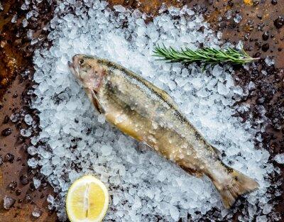 Наклейка свежая рыба