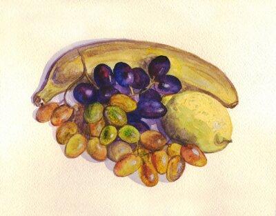 Наклейка Фрукты, виноград, лимон, банан. Акварельная живопись