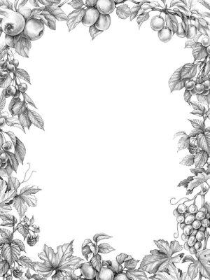 Наклейка Фруктовая Вертикальная Рамка Карандашный Рисунок