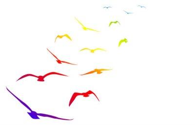 Наклейка Gabbiani, Volare, Volo, Arcobaleno, темп