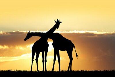 Наклейка Жираф силуэт на закате