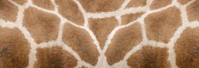 Наклейка Giraffe skin Texture - Image 1