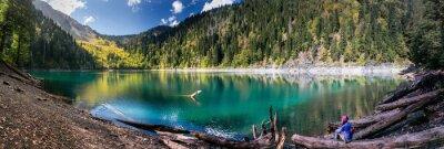 Наклейка Девочка восхищается живописный вид на горы и озеро Рица в заповеднике в Абхазии