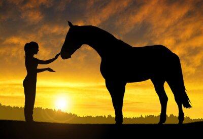 Наклейка Девушка с лошадью на закате