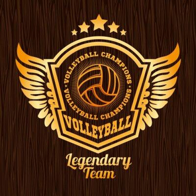 Наклейка Золотой волейбол эмблема на деревянной текстуры.