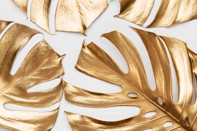 Наклейка Golden monstera leaves on white background