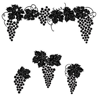 Наклейка Виноград выгравированы дизайн набор лоза винограда украшения набор элементов декора.