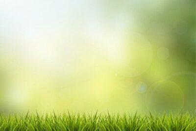 Наклейка Трава и зеленая природа размытым фоном