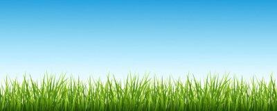 Наклейка Трава и небо