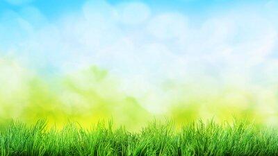 Наклейка трава фон