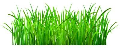 Наклейка Зеленая трава