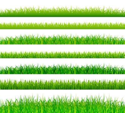 Наклейка Зеленые границы травы установить