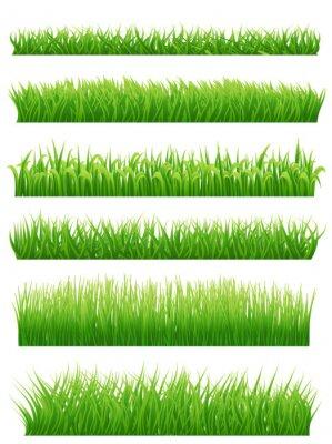 Наклейка Зеленые границы травы установить на белом фоне. Векторная иллюстрация