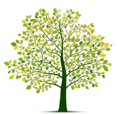 Наклейка зеленое дерево изолированных
