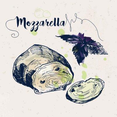 Наклейка Ручной обращается сыр моцарелла и листья базилика