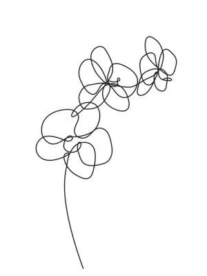 Наклейка Ручной обращается цветки орхидеи. Черно-белая векторная иллюстрация
