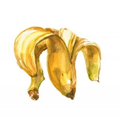 Наклейка Ручная роспись акварель иллюстрации банана