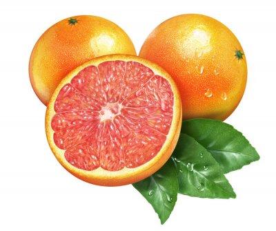 Наклейка Сочные свежие грейпфрута на фоне Whtie