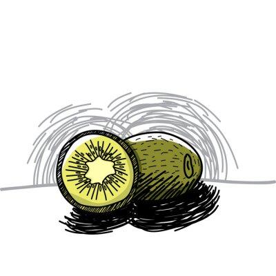 Наклейка Киви с чернилами рисованной-Векторные иллюстрации